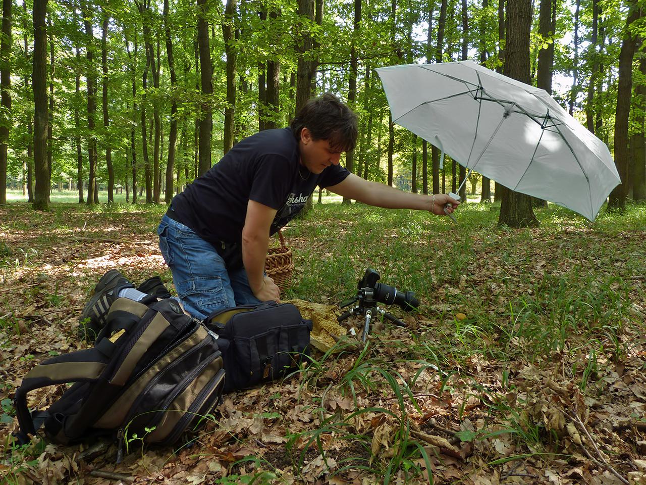 Fotografování hub