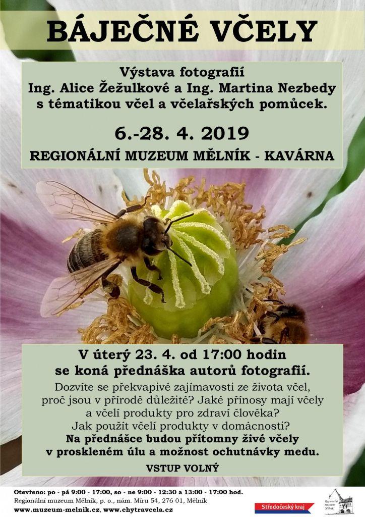 Báječné včely - přednáška