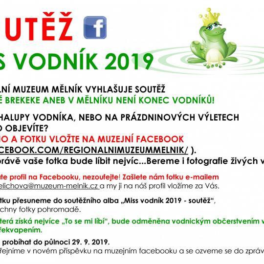 Brekeke! aneb V Mělníku není konec vodníků... 3