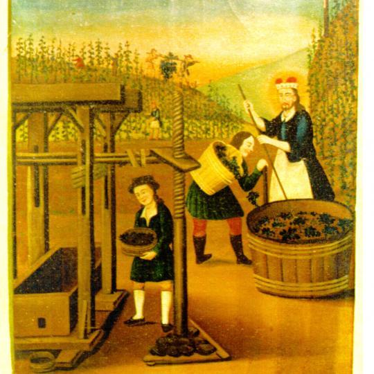 Vinobraní v muzeu 2019