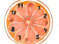Cyklus času a života