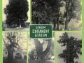 Významné stromy Mělnicka